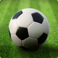 World Football League 1.9.9.3